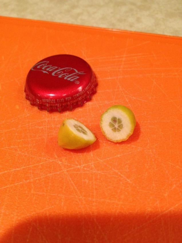 Мама вырастила нереальный лимон