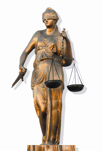 Специальность право и организация