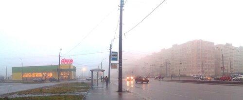 Утро туманное (4 кадра)