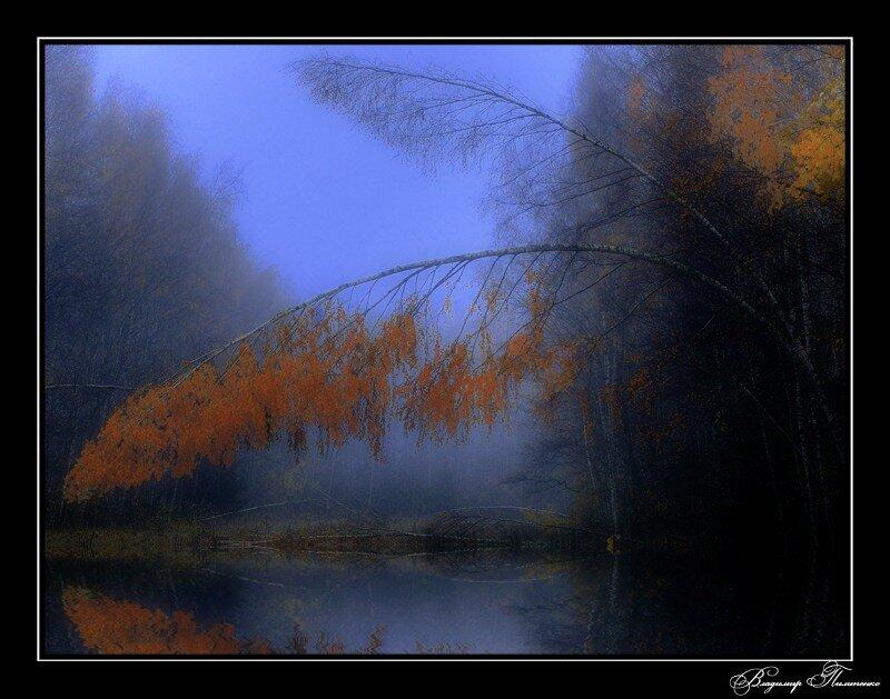 Фотограф Владимир Пилипенко