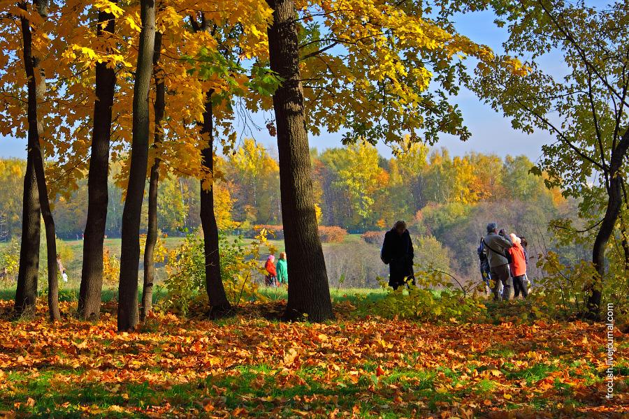 Посетители парка Царицыно гуляют по опавшей сухой листве