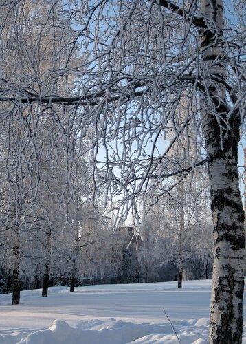 http://img-fotki.yandex.ru/get/4402/vecher-natalya.13/0_52a09_e455c9f3_L.jpg