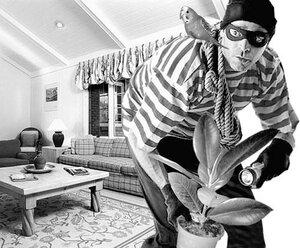 С наступлением лета в Приморье увеличилось число квартирных краж