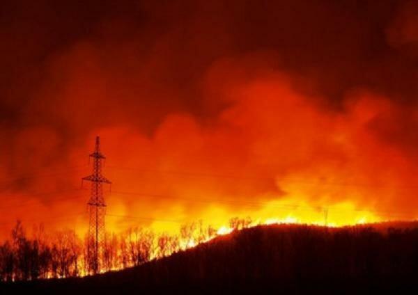 ЛЭП. Лесной пожар