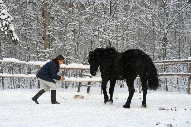 Зимнее баловство. 0_75f52_67993117_XL