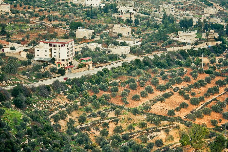 Окрестности замка Аджлун / Ajlun Castle neighborhoods