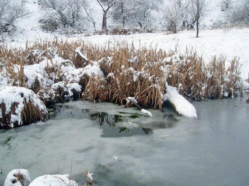 Замерзшая вода, трава в снегу