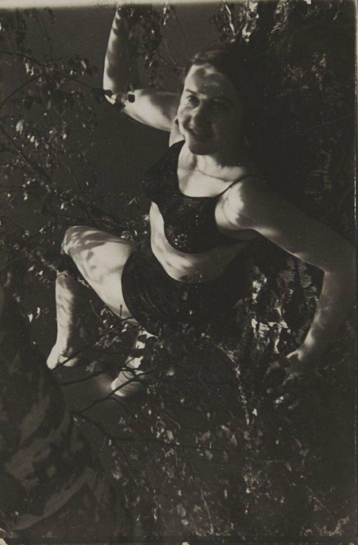 1930-е. Женщина на ветке дерева