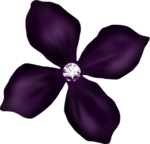 flower10.png