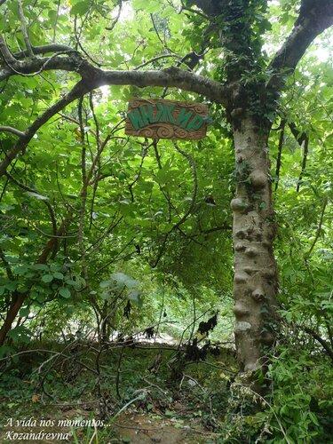 Библейское дерево