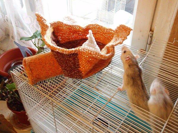 крысы, кокон, рукоделие