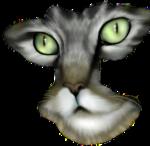 Кошки 5 0_50a38_886e0371_S