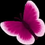 бабочки 0_50e75_677bee9_S