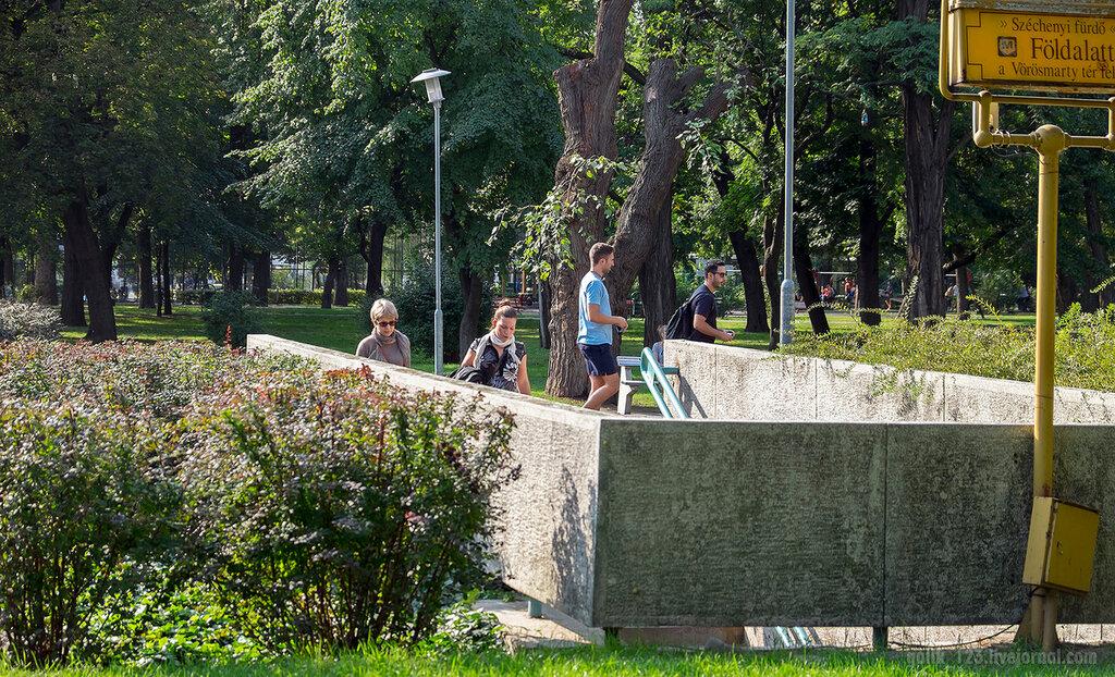 DSCF8873.jpg
