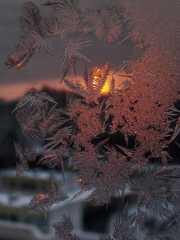 На закате морозного дня