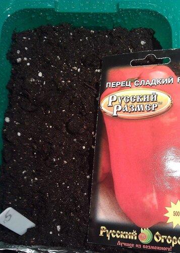 Перец сладкий F1 Русский Размер. Агрофирма Русский Огород