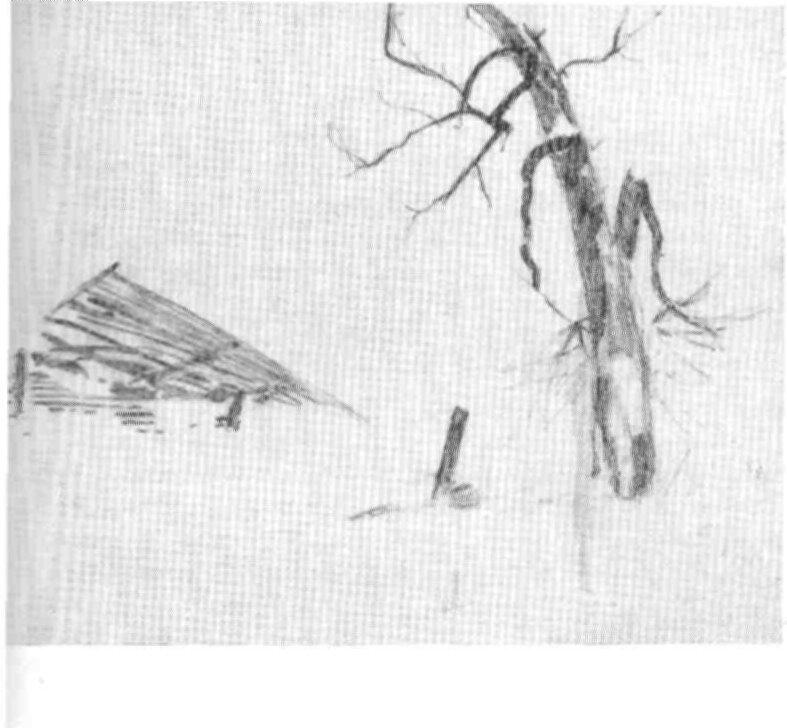 С.Уранова. Отчий дом (композиция). 1944