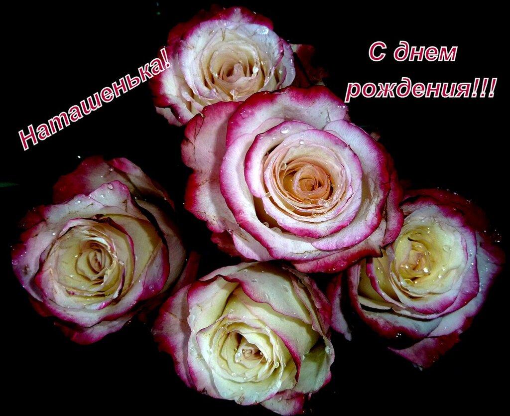 http://img-fotki.yandex.ru/get/4404/erosolga.55/0_4cce6_cd218722_XXL.jpg