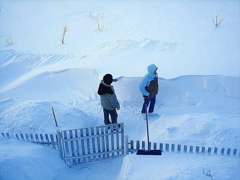 Зима,с.Остров,подворье,февраль