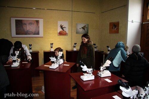 выставка миниатюр, владимир анискин