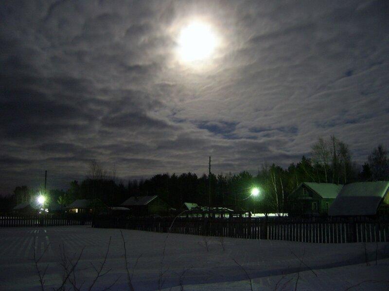 ночька Лунная ...