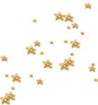 «DBV Gold Rush» 0_58b33_7f5db5d5_S