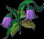 purple flower~jules.png
