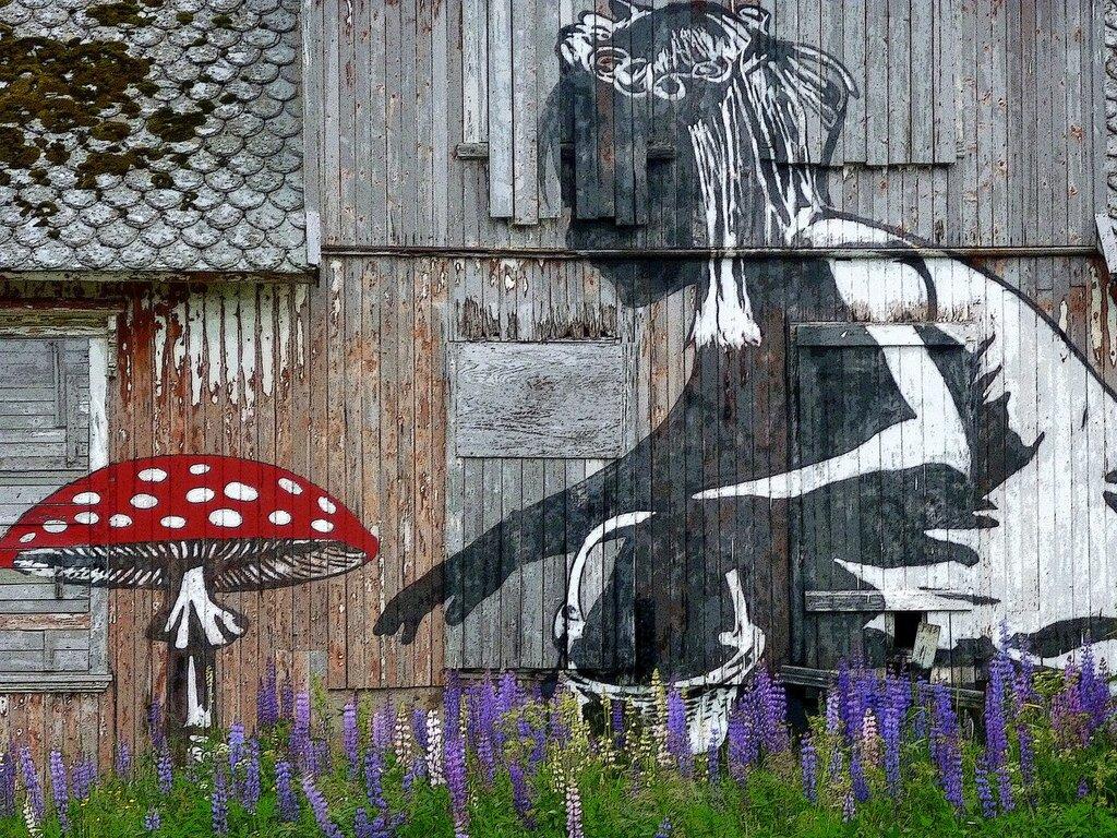 The Mushroom girl by Dolk
