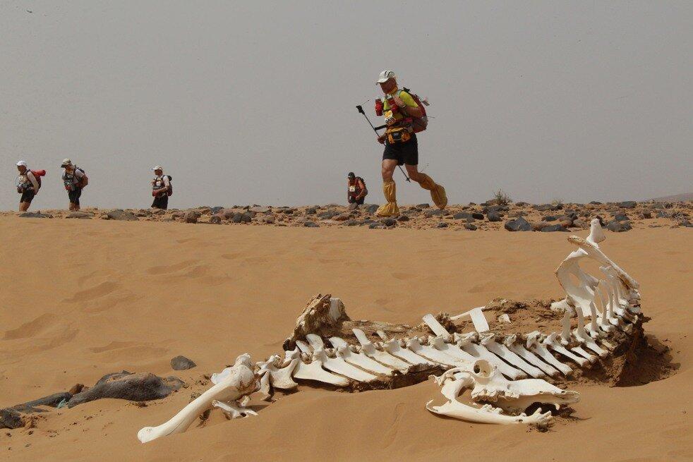 Марафон в Марокко TOPSHOTS-MOROCCO-MARATHON DES SABLES