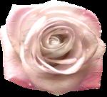 «A woman in love by Cajoline-Scrap» 0_7f80e_2da7fae9_S