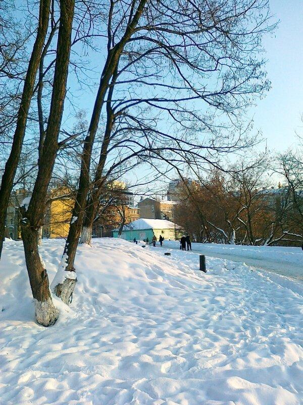 Пейзажная аллея зимой
