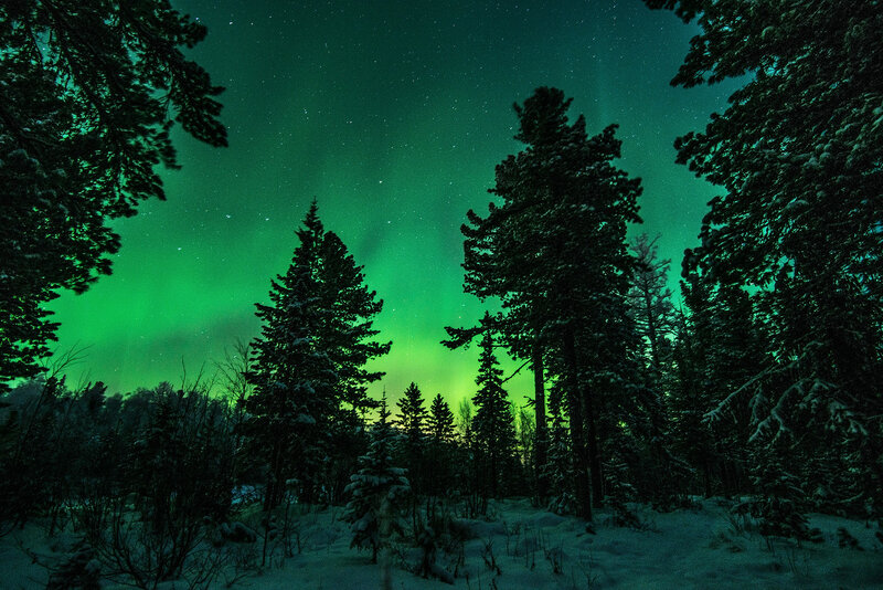 Морозной ночью