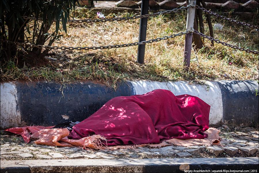 Эфиопские бездомные / Ethiopian homeless