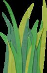 aheimann-rconnect-grass.png