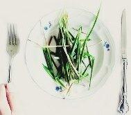 минусы вегетарианства_minusy vegetarianstva
