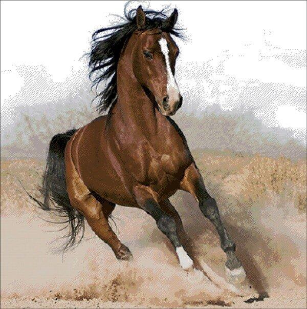 лошади схема вышивки скачать