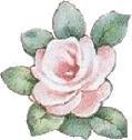 rosenrosa003.png
