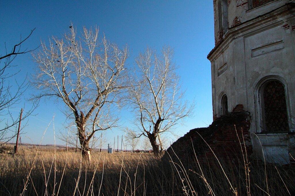 http://img-fotki.yandex.ru/get/4405/for-our-photos.10/0_54260_f4d096d2_XXL.jpg