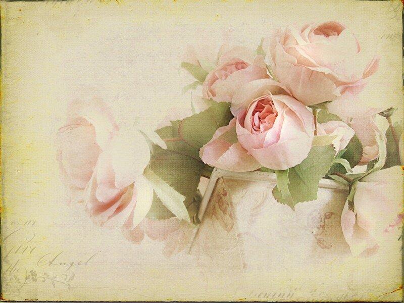 открытки под старину цветы птица