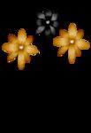 «DBV Gold Rush» 0_58b64_12deb646_S