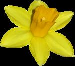 «ZIRCONIUMSCRAPS-HAPPY EASTER» 0_53d83_b1f6a6e9_S