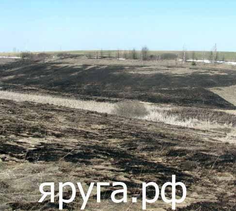 пал травы красная яруга краснояружский район