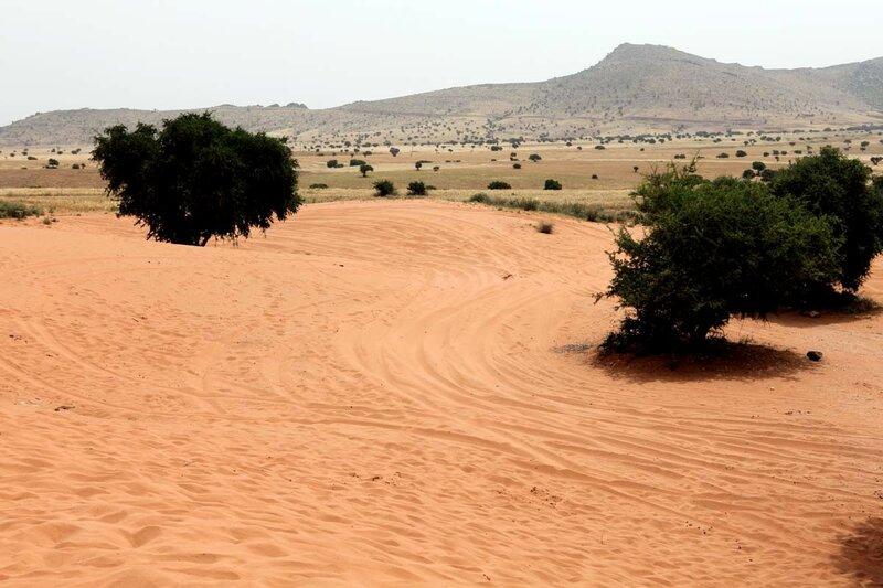 Мини-Сахара - небольшой участок пустыни