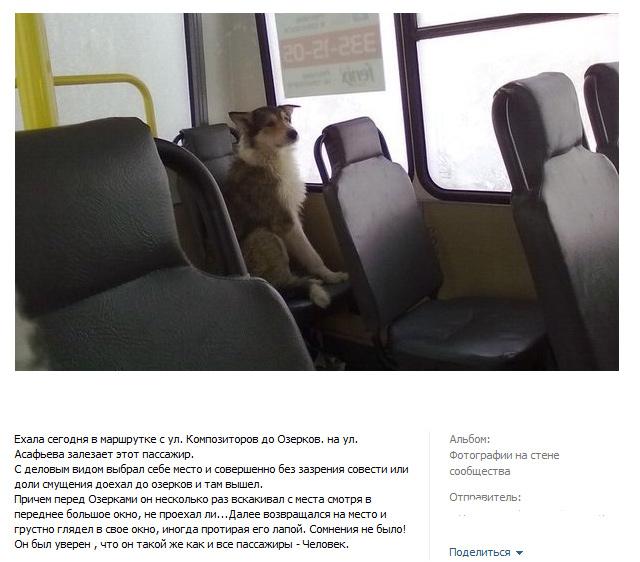 http://img-fotki.yandex.ru/get/4406/130422193.da/0_753b2_3d120377_orig