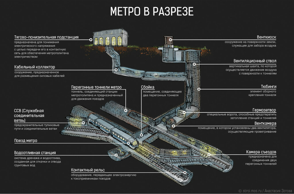 Метро в разрезе. stroi.mos.ru