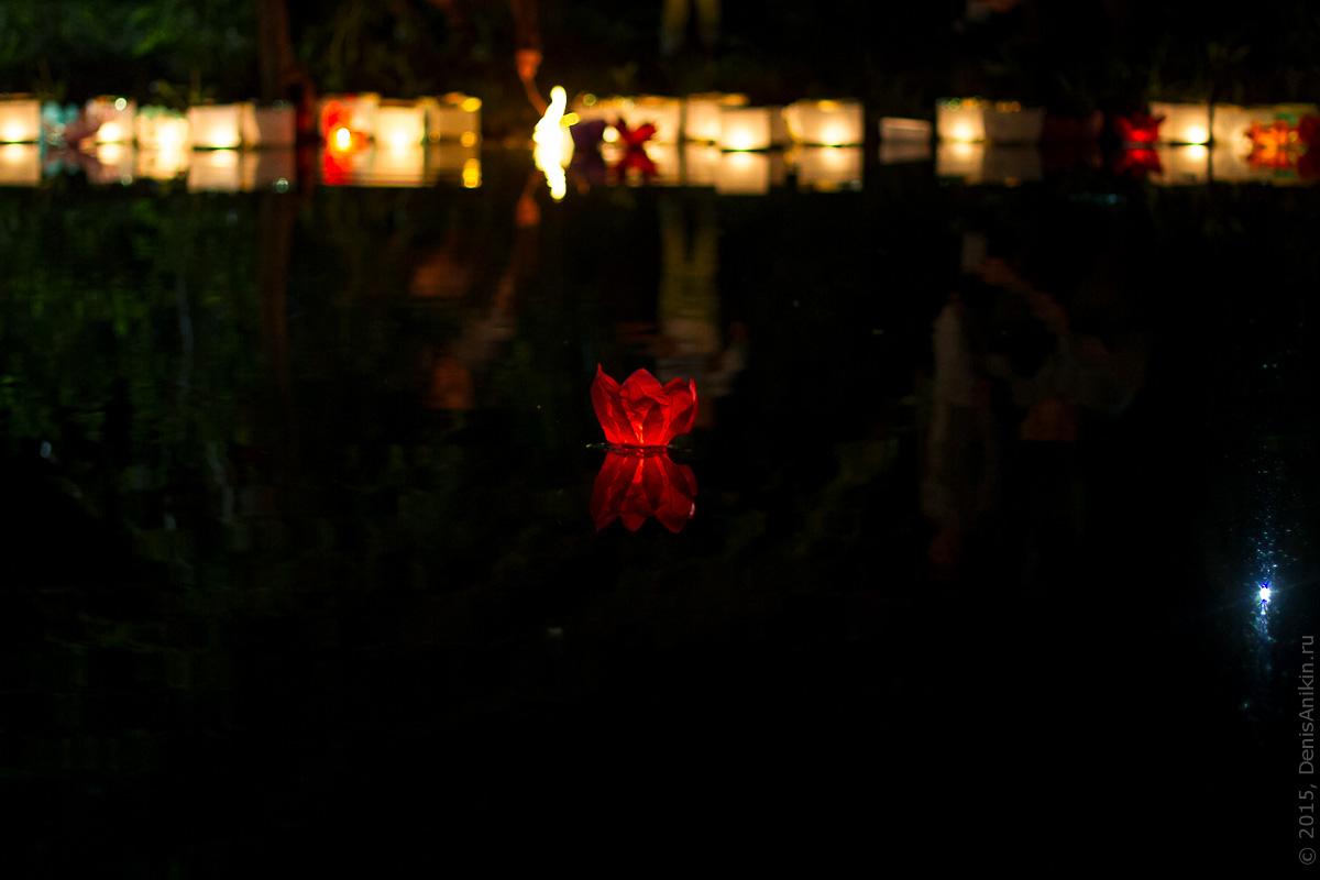 Фестиваль водных фонариков Саратов 10