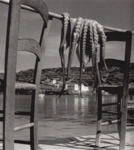 Octopus Corfu Greece, 1938