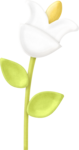flower_7_maryfran.png