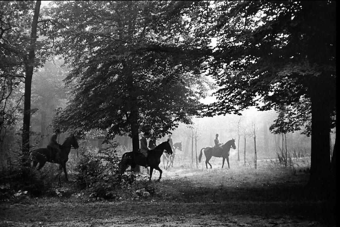 1956. Всадники в Булонском лесу