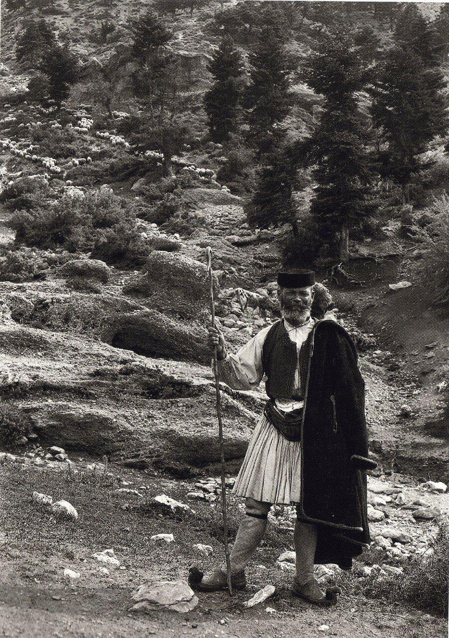 1903. Ароания